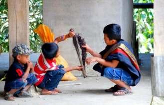 12-indonesia-sulawesi-nanka-19